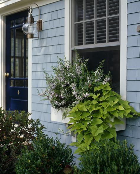 windowbox