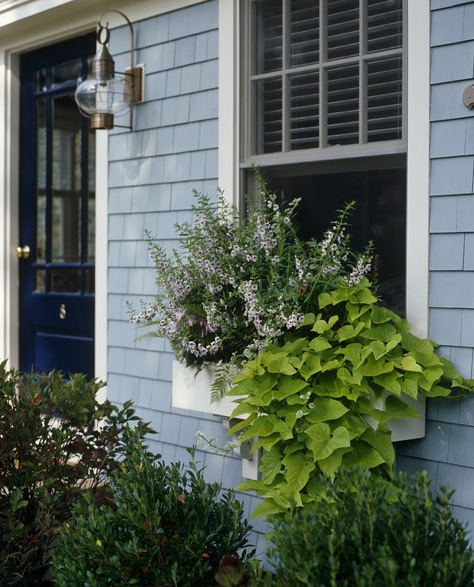 Wooden Window Box Plans Wooden Plans easy to make wood projects ...